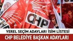 CHP belediye başkan adayları isim listesi son dakika 2018 CHP belediye başkan adayları belli oldu mu?